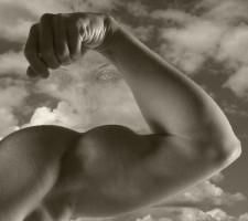 Storemuskler